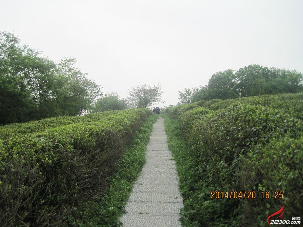 游句容赤山风景区