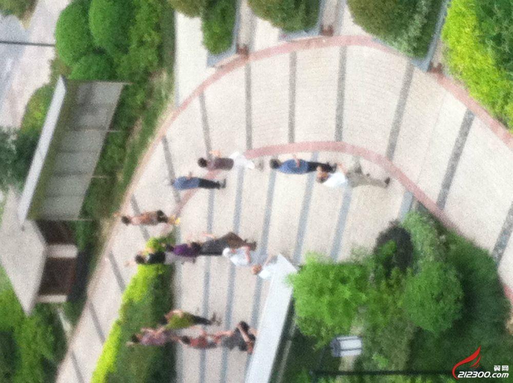 看吧,江南人家的老人家 干嘛不去自己家楼下跳啊 聚焦丹阳 丹阳翼网 高清图片