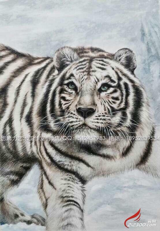 画画-彩铅手绘动物