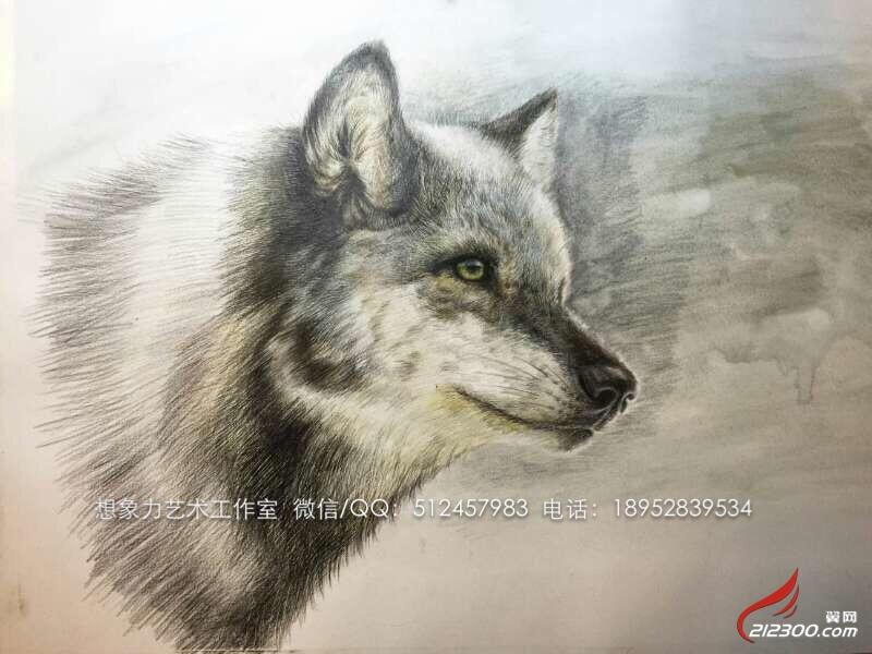 彩铅手绘动物